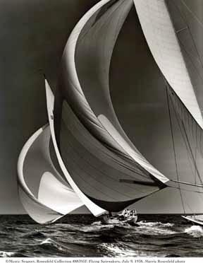 sailing winds