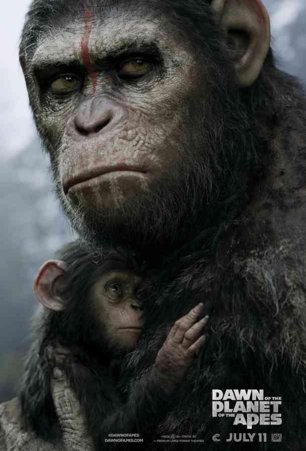 el planeta delos simios confrontacion 8.5