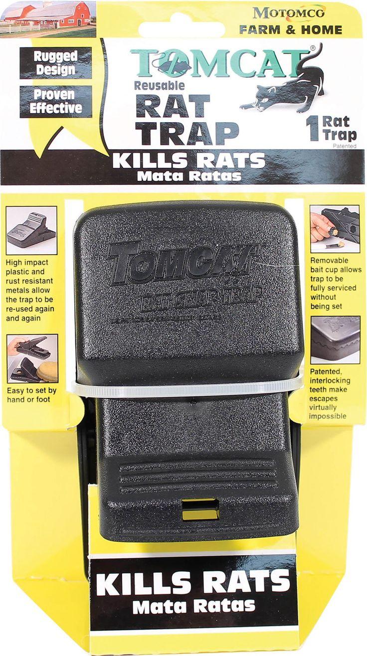 best 25 rat traps ideas on pinterest live rat traps best fruit