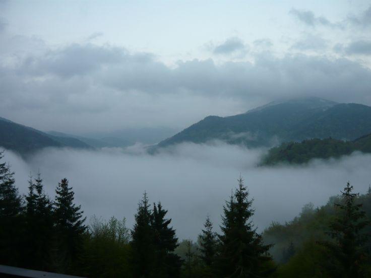 Hajnal a Dragan tónál