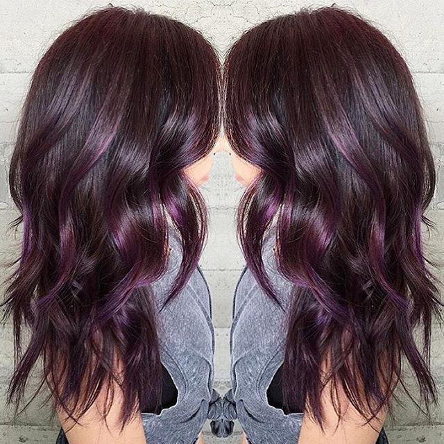 Plum Hair Color Sallys Dark Brown Hairs Of Dark Plum Hair