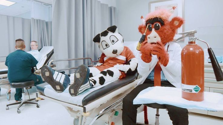 Introducing the first-ever mascot specialist doctor at Midwest Orthopaedics at Rush - the one and only Benny The Bull!  Some of his methods may blow your mind: