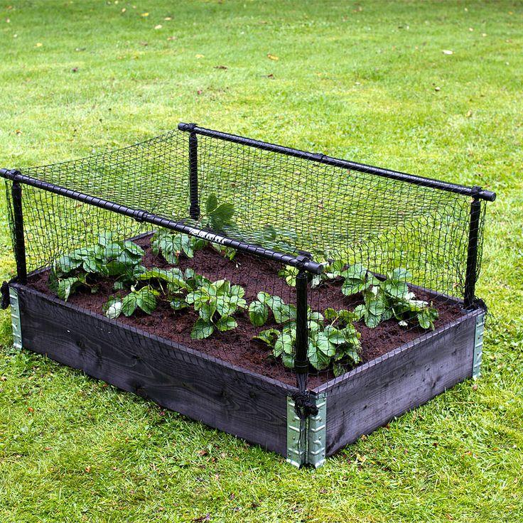 Stomme till växtskyddsnät och växtskyddsplast på pallkrage och odlingslåda. Skyddar bär och växter mot skadegörare