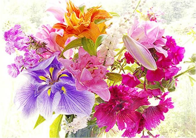 Send flowers . . . exquisite and enchanting sampaguita flowers with pictures and clip art!