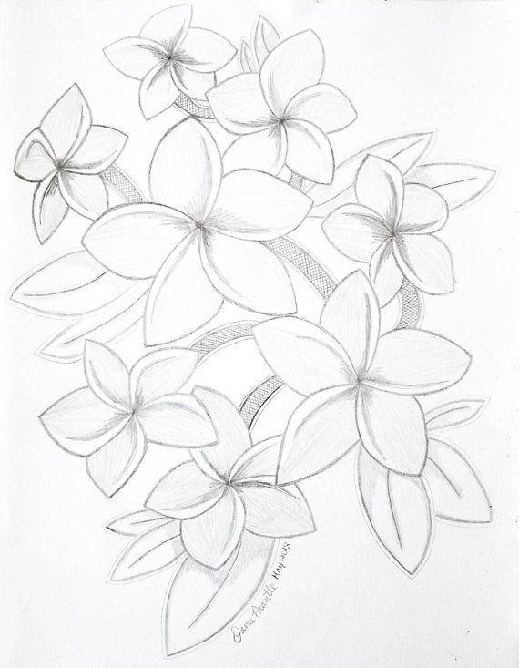 Little Home Drawing Hawaiian Plumeria Wall Art Original Pencil