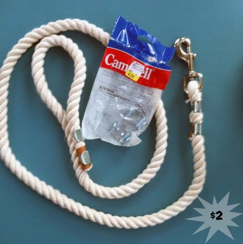 DIY Leash. Thick cotton lead rope type for day to day stuff, thinner and longer (also cotton) for training purposes.