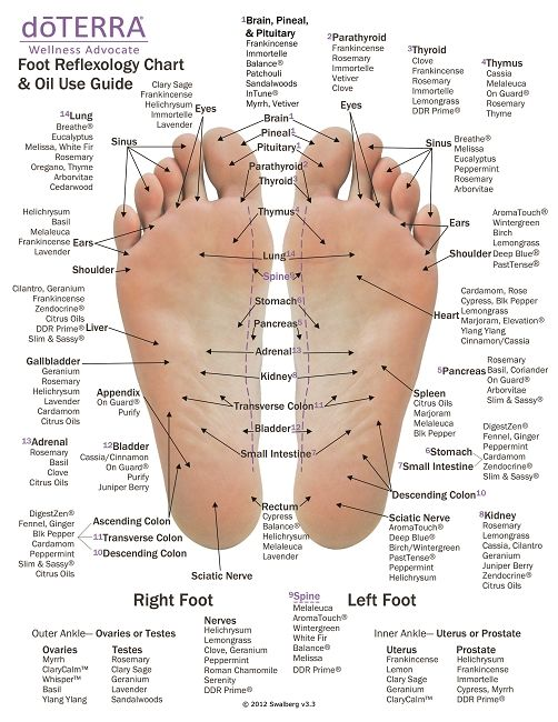 This is a great reflexology chart to reference the best places to apply essential oils to the feet. Find out more about essential oils at: www.karamariaananda.com/essentialoils