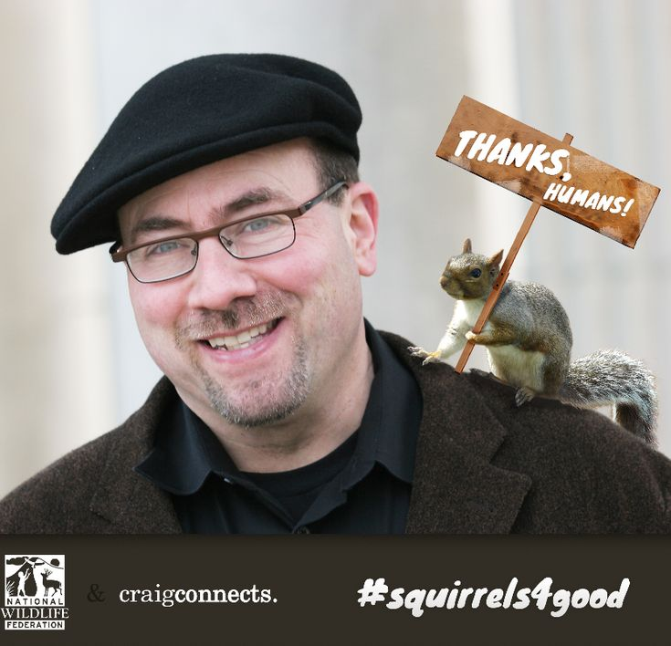The squirrels, and myself, really thank all of you for helping raise money to support NWF.Craig Newmark, Support Nwf, Super Friends, Helpful Raised, Fundraisers Ideas, Business Heroes, Sugarbush Squirrels, Raised Money, Pin Pals