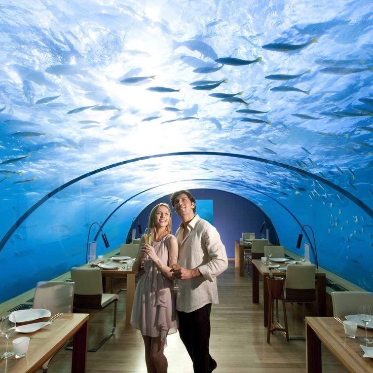 Best 25 Underwater Hotel Room Ideas On Pinterest