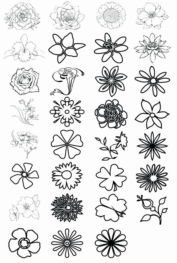Free Printable Small Flower Coloring Pages Fresh Printable Small Flower Coloring Pages Flower Coloring Pages Small Flowers Coloring Pages