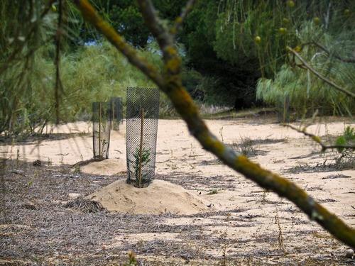 Entorno Laguna del Portil, El Portil - Huelva. Spain www.portilplaya.com