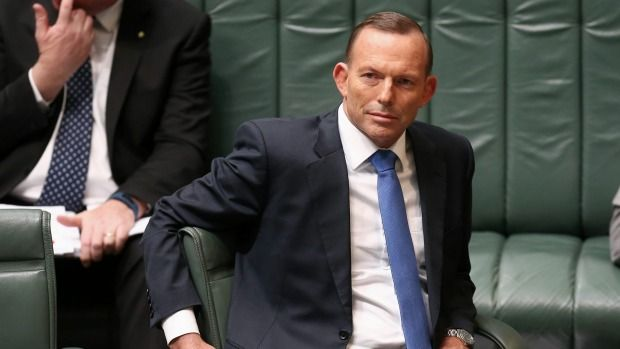 Cruise ship boss wants apology from Prime Minister Tony Abbott over lie claim.