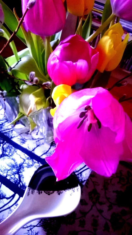 Kodin Kuvalehti – Blogit | Hullun hutuntekijän teekutsut