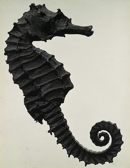 Man Ray, 1930.