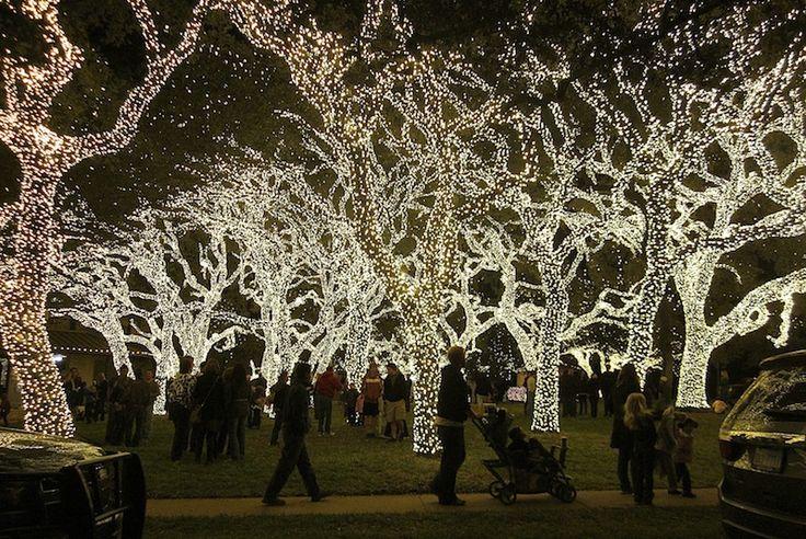 PEC lights - only about 1 million! Johnson City, Texas