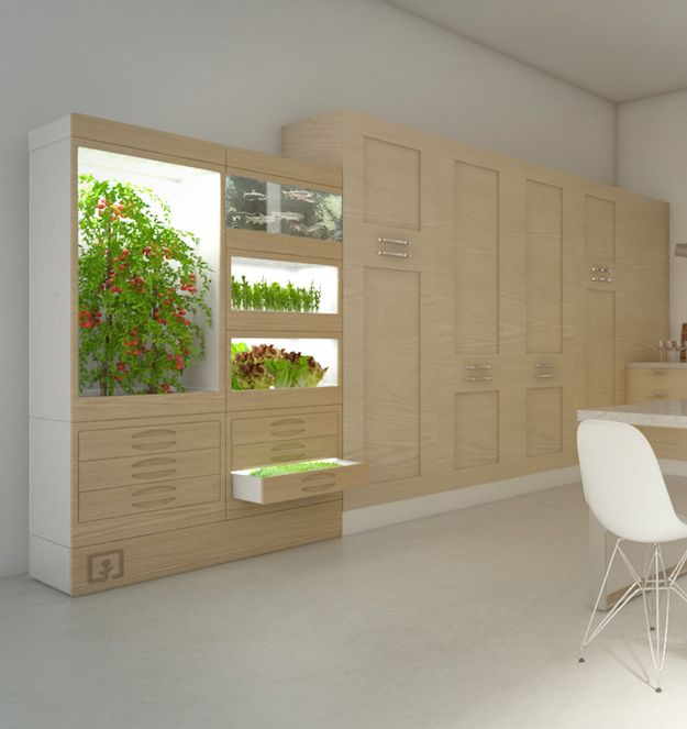 Really Cool Cupboard Indoor Hydroponic Systems