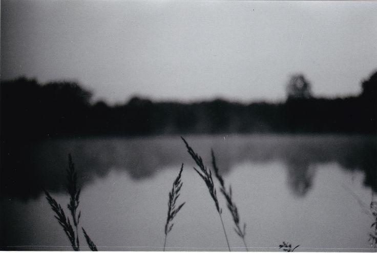 South Bohemia #czechrepublic  Krajina rybníků, mlh, blat... ♥️