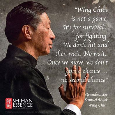 WING CHUN, Krav Maga, Special Forces CQB, Shoot/ Don't Shoot, Killology, ALL teach you must hit relentlessly until the threat has been ELIMINATED!