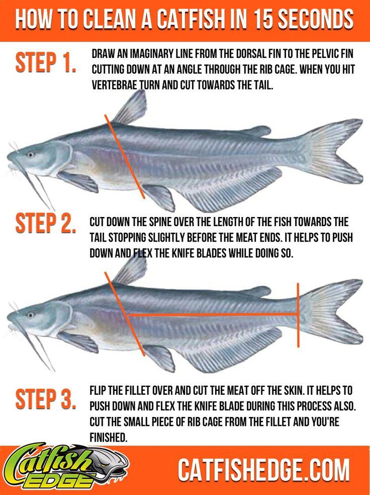 40 best catfish noodle jugs led lights images on pinterest for How to make fishing noodles
