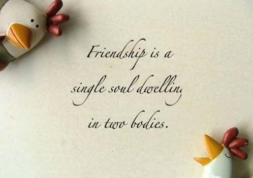 Friendship according to Aristotle