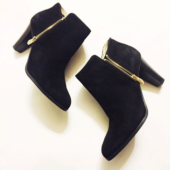 Adrienne Vittadini Booties Black suede booties with gold hardware super chic and comfy!! Adrienne Vittadini Shoes Ankle Boots & Booties