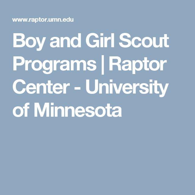 Boy and Girl Scout Programs | Raptor Center - University of Minnesota