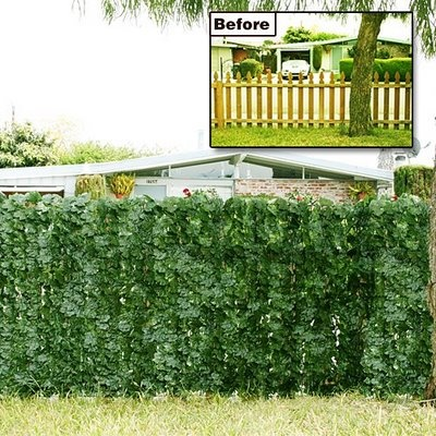 Living Privacy Fence