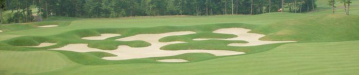 Bungay Brook Golf Club: 9 Hole Championship Golf Course Bellingham, Massachusetts