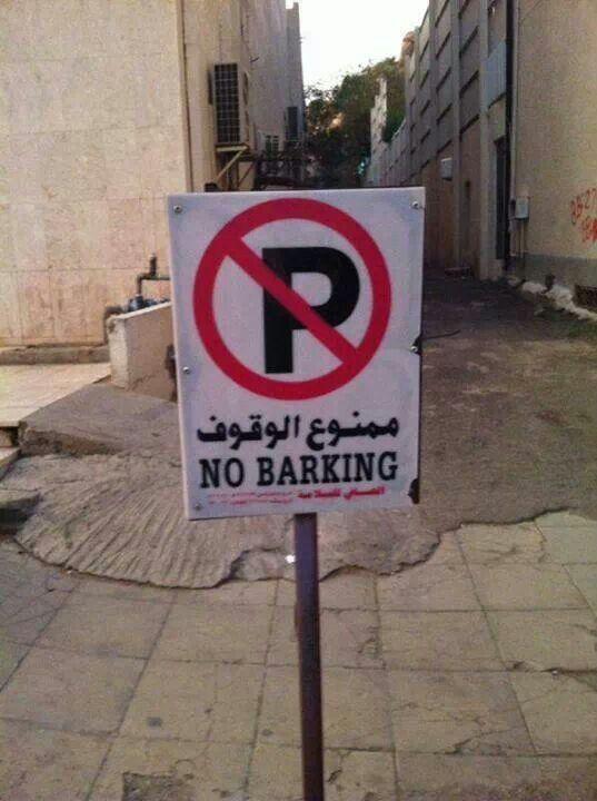 No P in Arabic