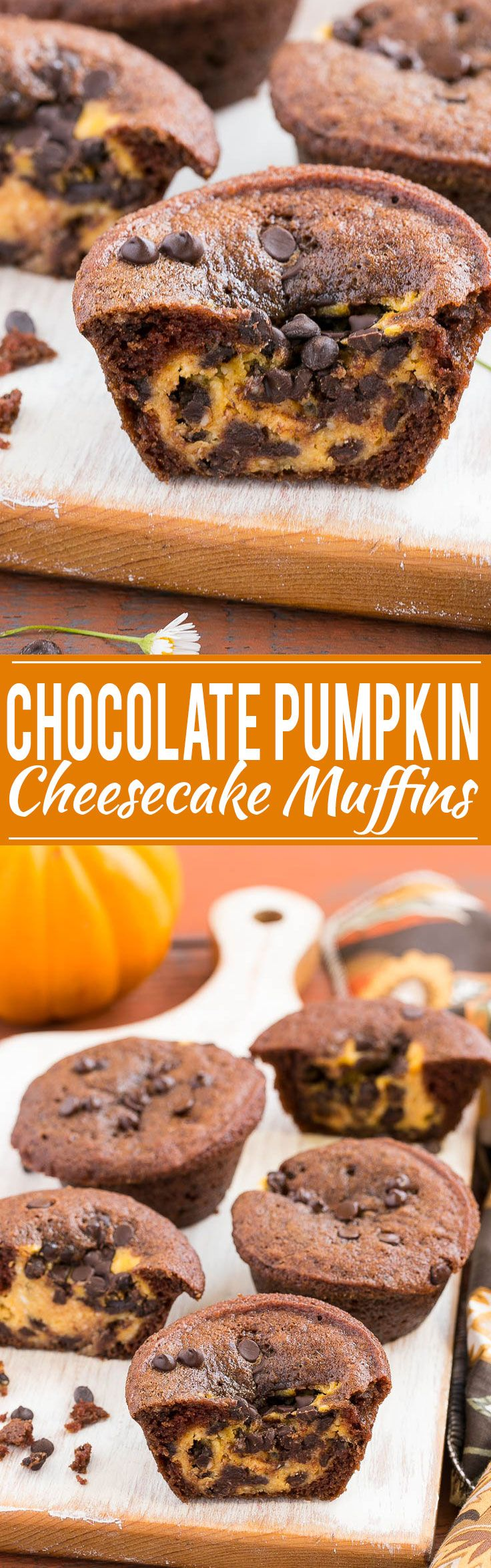 A rich chocolate muffin with a surprise chocolate chip pumpkin cheesecake center.