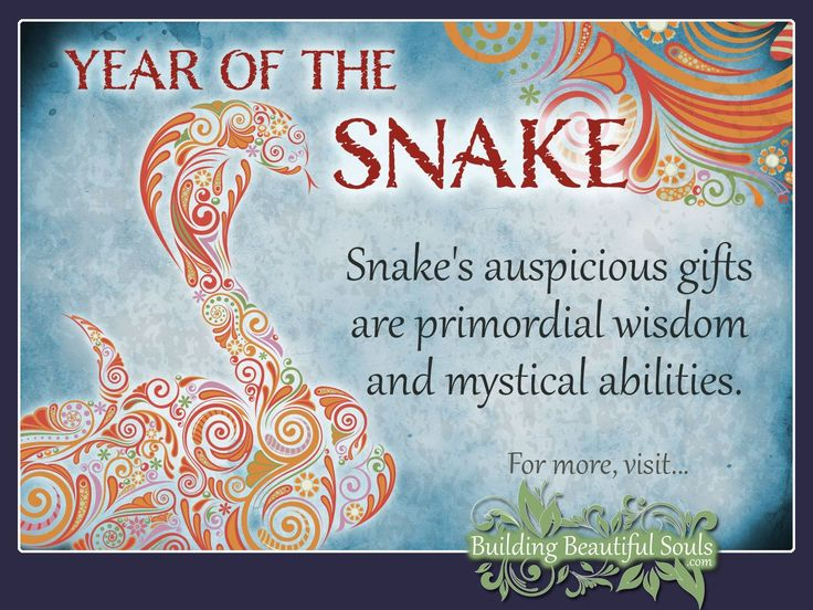 Chinese Zodiac Snake years are 1953, 1965, 1977, 1989, 2001, 2013, 2025. Get in-depth info on the Year of the Snake traits & personality!