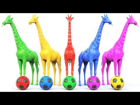 Learn Colors with Soccer Balls for Children Toddlers and Babies #h - Learn Colors with Animals - YouTube