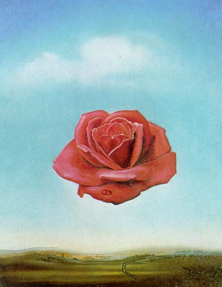 Meditative Rose, 1958 (Dali) - I remember trying to pain this in Art class in grade 7,8.