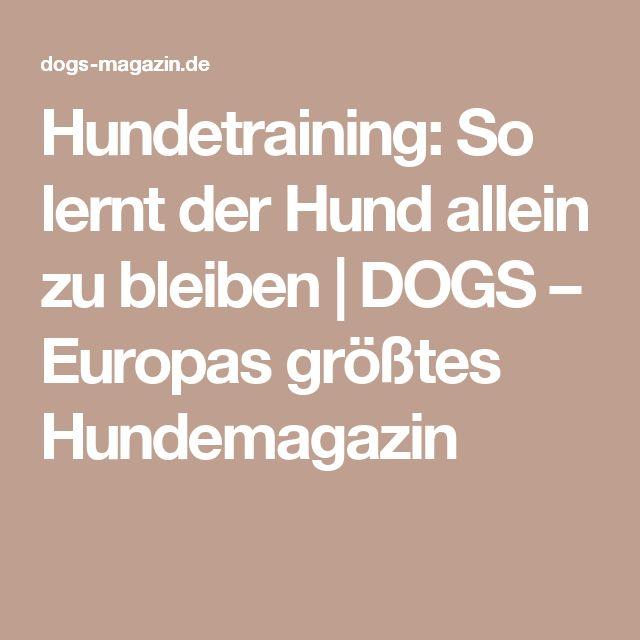 Hundetraining: So lernt der Hund allein zu bleiben | DOGS – Europas größtes Hundemagazin