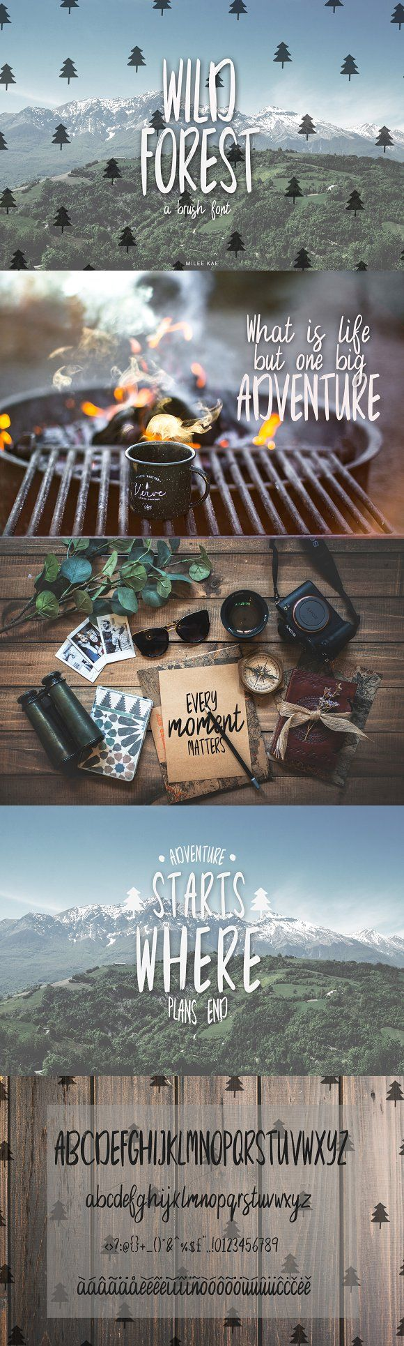 Wild Forest a modern brush font by Milee Kae on @creativemarket