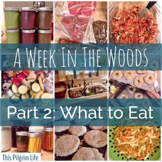 Part 2 of a series on camping with the family...Ideas for what to make ahead, what to pack, and what to eat at each meal.