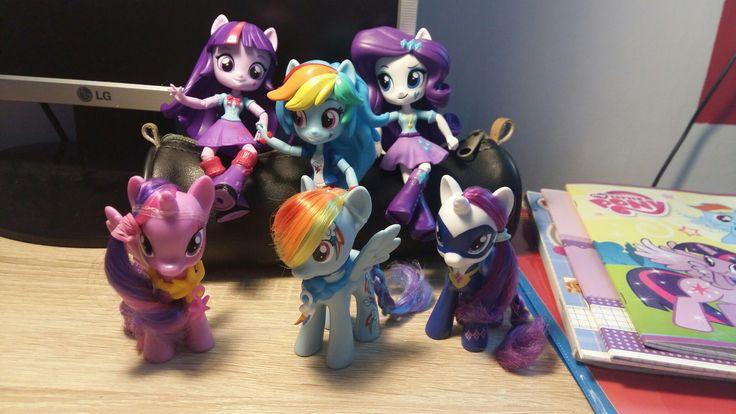 EG minis and ponies