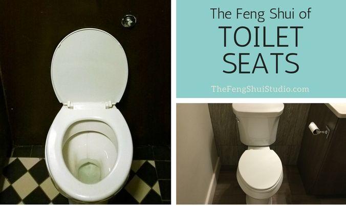 Feng shui toilet seat bosch screw set