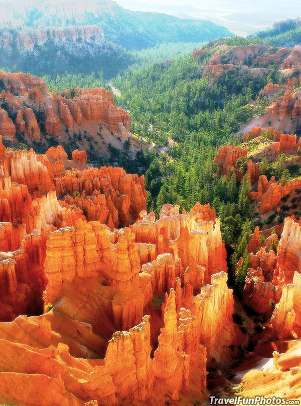Stunning Rock Formations in Bryce Canyon National Park, Utah – USA
