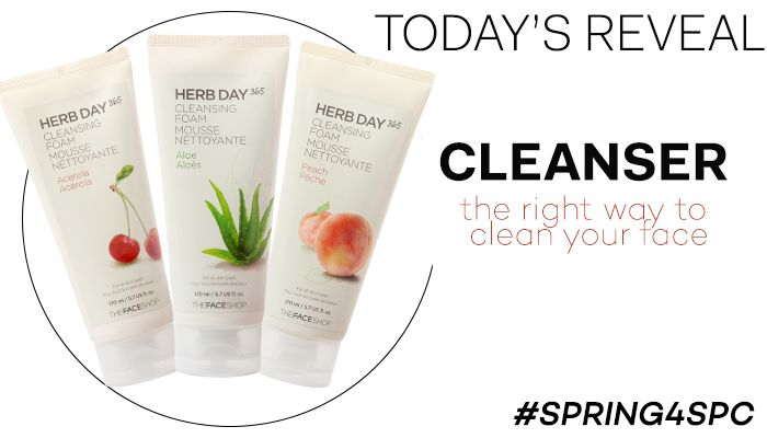 Herb Day 365 Facial Cleanser from #THEFACESHOP