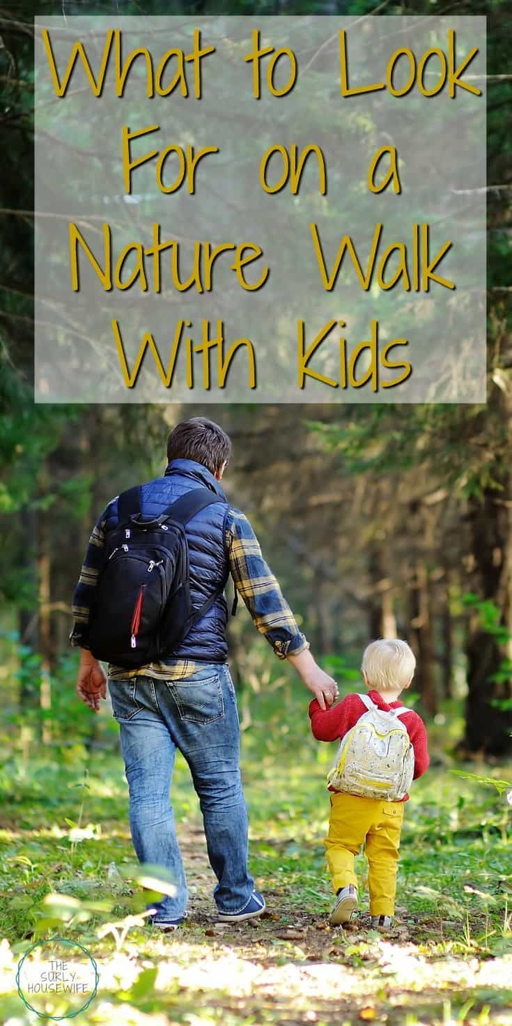 Nature Walk With Kids The Best Of The Surly Housewife Pinterest