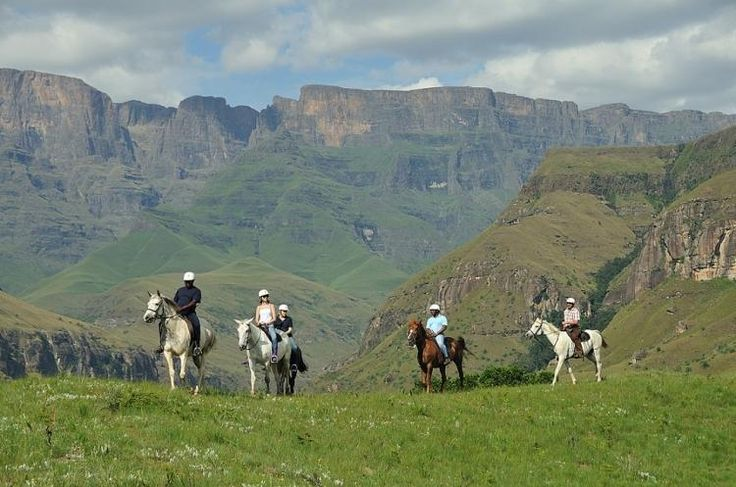 Try the best horse trails in the Southern Drakensberg with Mount Zion Tours and Travels. This will be a memorable experience if you can try it with us.