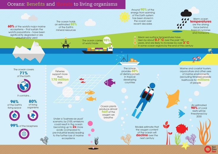 Oceans: Benefits and threats to living organisms. What's happening to our ocean? And why is the ocean so important?