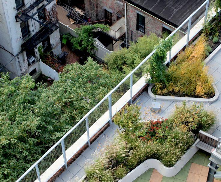 <b>Printing Press Roof</b><br/>Communal Terrace — terrain nyc