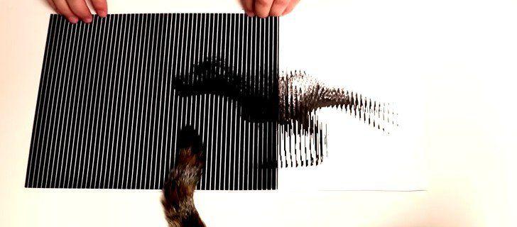 Sorprendentes ilusiones ópticas utilizando solo dos hojas de papel - http://viral.red/sorprendentes-ilusiones-opticas-utilizando-solo-dos-hojas-de-papel/