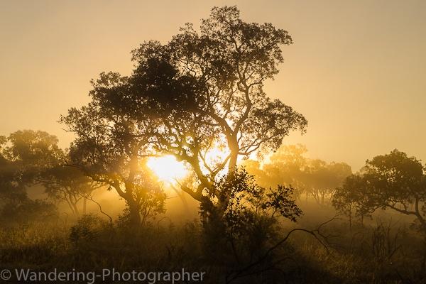 Sunrise through the mist at Karijini National Park, Pilbara, Australia