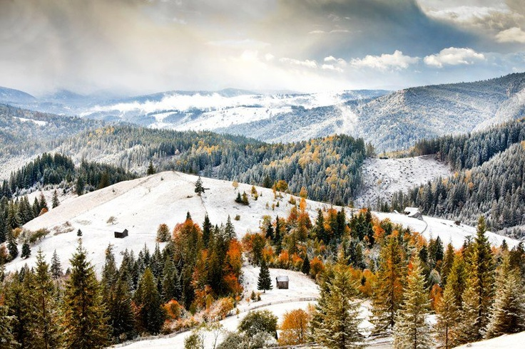 Bucovina, Romania - Sorin Onisor