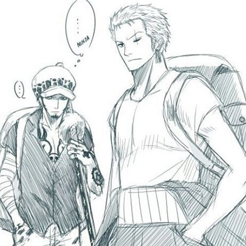Law and Zoro