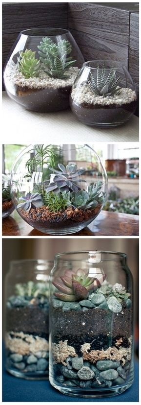 Vasos transparentes! Aquários e potes de vidro podem se transformar em vasinhos de planta muito chiques! Para deixá-los ainda mais bonitos, coloque pedrinhas coloridas.