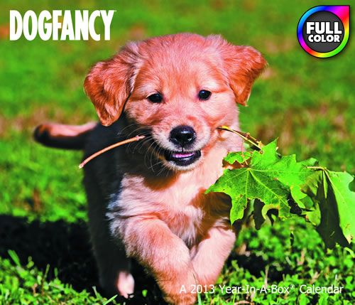 Dog Fancy 2013 Boxed Calendar LMB45-1013